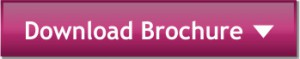 download-browcher